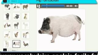 Vocabulaire anglais les animaux de la ferme (vocabulaire anglais facile)