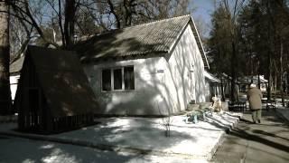 Украина: как выживают люди на востоке страны