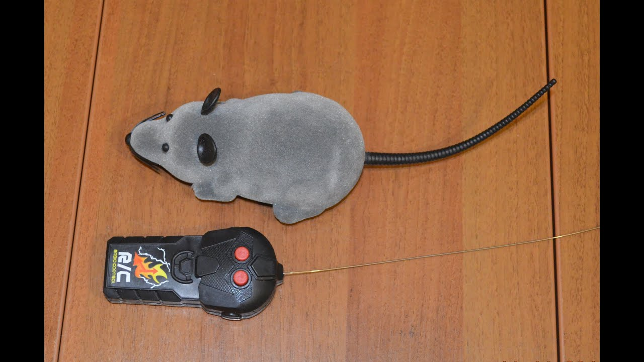 Мышки для компьютера или ноутбука ➤ в магазине ☛citycom по цене ₴ от 149 грн. ☛ кредит без % • акции ✓ хотите еще дешевле?. Звоните!. ☎ (044) 461-88-88.