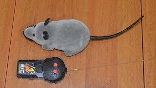 Мышь на радио управлении из Китая(, 2015-03-15T03:24:29.000Z)
