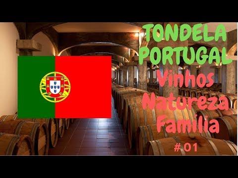 Tondela, Santa Ovaia, Viver em Portugal.