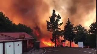 Verheerender Waldbrand Cruze de Tejeda Gran Canaria