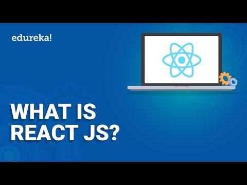 What is ReactJS? | ReactJS Basics | Learn ReactJS | React for Beginners | ReactJS Training