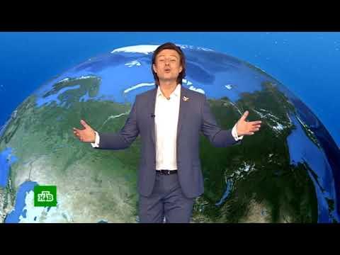 Погода сегодня, завтра, видео прогноз погоды на 19.5.2019 в России