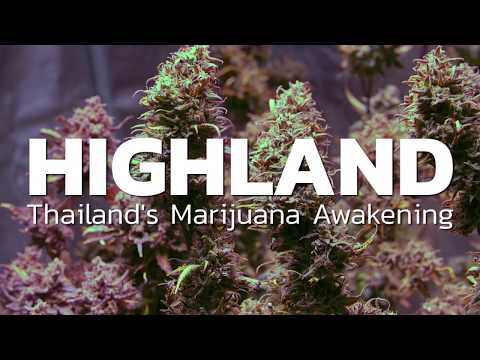 HIGHLAND: Thailand's Marijuana Awakening (trailer) | Coconuts TV on Netflix