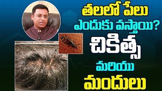 Head Lice: Symptoms, Treatment and Prevention||Myra Media