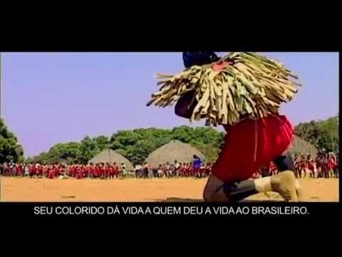 Descubra Mato Grosso 15Minutos