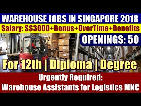 Warehouse Jobs In Singapore: Warehouse Assistants | Logistics MNC | Openings: 50 | Fresher's Welcome
