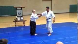 Aikido - Andrew M. Sato Sensei Demo - NIkyo