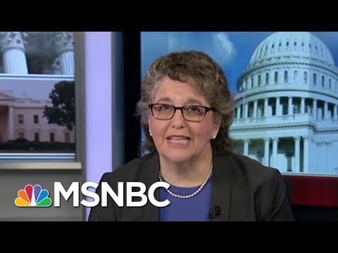 FEC Chair: Entire US Gov't. Must Speak Out | Morning Joe | MSNBC