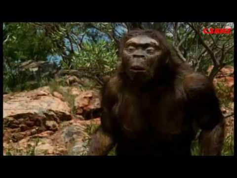 As Origens da Humanidade - A Odisseia da Espécie - LEGENDADO