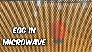 what will happen if you microwave an egg