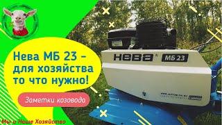 мотоблок Нева МБ 23 - для хозяйства то что нужно 22.08.2019