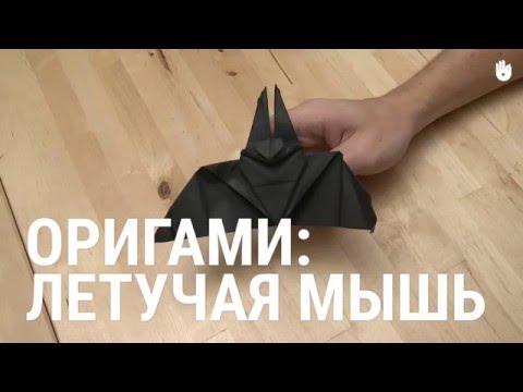 Оригами летучая мышь видео