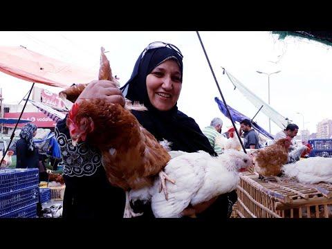 #شوفوا خفة دم الصعايدة الجدعان/ واحنا بنشترى الطيور من سوق الجمعة بارخص الاسعار