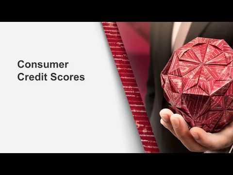 Consumer Credit Scores