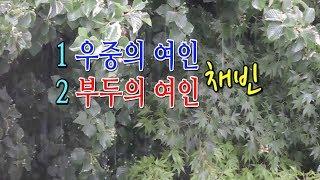 Download lagu 채빈 우중의 여인/부두의 여인 2곡 (시원한 빗줄기)