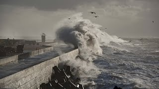 Der Ozean - Ein Ökosystem im Wandel
