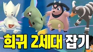 포켓몬고 2세대 희귀 포켓몬 골라 잡아보자! 포켓몬GO [Pokemon GO] - 기리