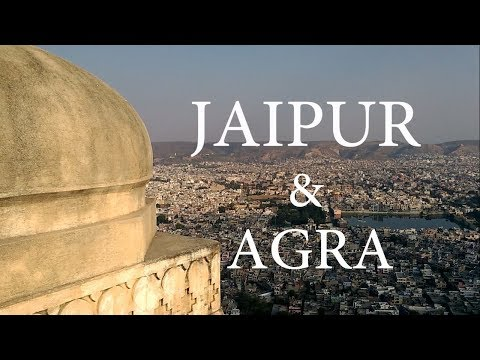 JAIPUR (PINK CITY) & AGRA TRAVEL VLOG | AMER FORT | TAJ MAHA