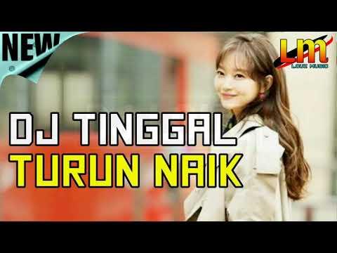 DJ TURUN NAIK 2018 | LAGU TIK TOK VIRAL DJ PALING ENAK SEDUNIA 2019