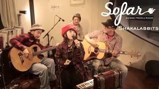 """SHAKALABBITS performing """"DAZZLING SOUP"""" at Sofar Tokyo on December ..."""
