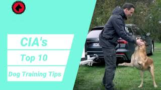 CIA's Top 10 Dog Training Tips
