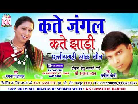 ममता चंद्राकर-Cg Song-Kate Jangal Kate Jhadi-Mamta Chandrakar-Sunil Soni-Chhatttisgarhi Geet HD 2018