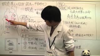 【日本史】テーマ史 蝦夷・隼人の征討(飛鳥~平安時代) (ぱんだの日...