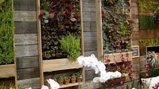 Вертикальное озеленение дома своими руками на даче (фото и видео)