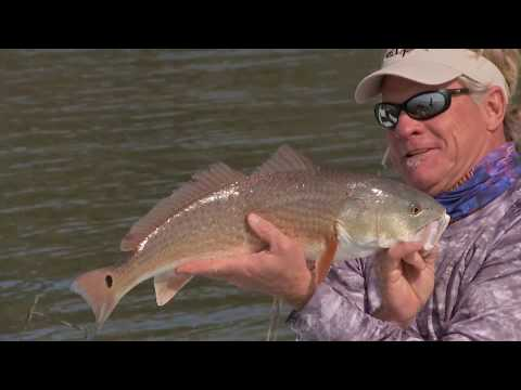 Georgia Flats Fishing For Redfish With DOA Lures And Mogan Spoon