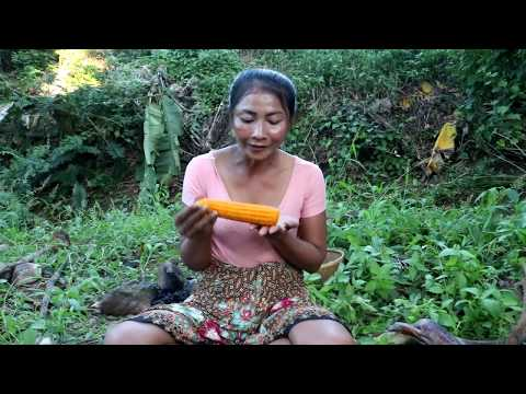 Survival skills: Finding natural corn & boiled on clay for food - Cooking Corn eating delicious