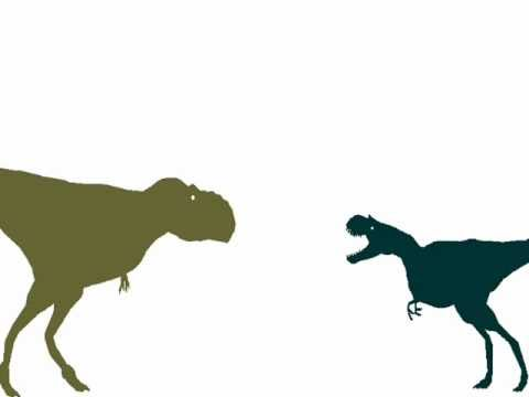 Armageddon: Round 1: Battle 5: Tarbosaurus versus Albertosaurus