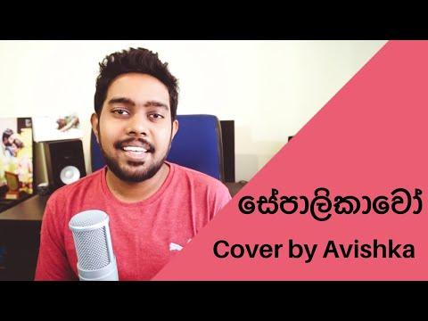 sepalikawo-සේපාලිකාවෝ-by-shehan-kaushalya-wickramasinghe-|-cover-by-avishka-laknath