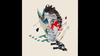 Animal Collective - Burglars