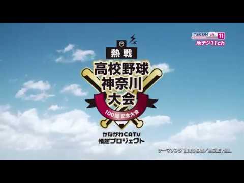 高校野球 神奈川大会 夏 生中継&ダイジェスト2018