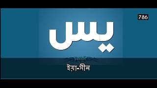 সূরা ইয়াসীন চমৎকার ভিডিও | Surah Yasin Full with Bangla Translation |  Yaseen Meaning Animated Video