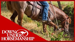 Clinton Anderson: How to Stop Your Horse From Tripping - Downunder Horsemanship
