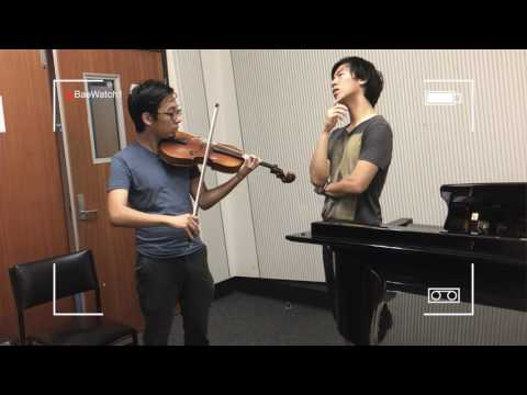Cheating on the Violin