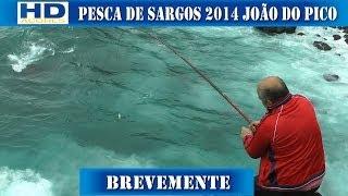 Pesca de Sargos Joao do Pico Brevemente 2014