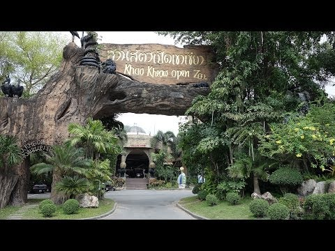 Pattaya Khao Kheow Open Zoo, wonderful Zoo located on a green Mountain.