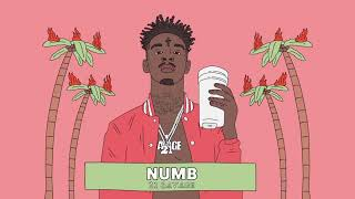 F1212 21 Savage Numb The Pain Tour Silk Poster 24x36 40In