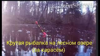 Крутая рыбалка на лесном озере за карасём