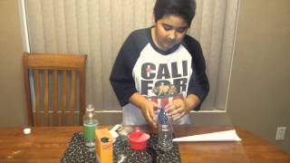5th Grade Science Project