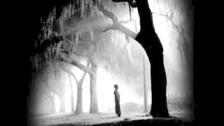 Damien Rice - All dressed up