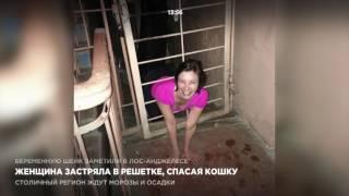 Женщина застряла в решетке, спасая кошку
