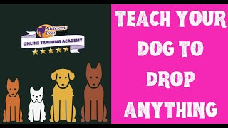 5 way to teach your dog to DROP anything!
