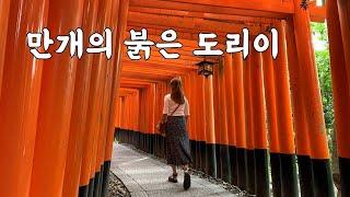 [교토여행] 후시미 이나리