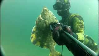 Spearfishing North Coast 2012