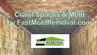 Crawl Spaces and Mold by FastMoldRemoval.com